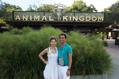 Day 5 - Animal Kingdom