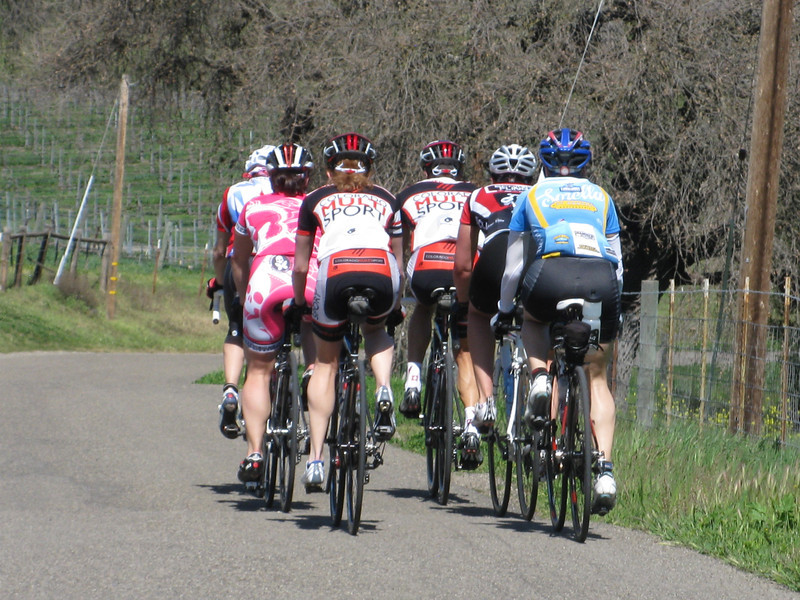 Group 1 adding extra mileage to the Drum Canyon ride - seen here on Ballard Canyon