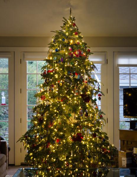 12-26-13 The Tree