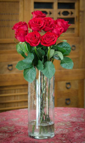 """2-14-13 Valentine Roses<br /> """"A wed wose - how womantic..."""" Madeline Kahn in """"Blazing Saddles"""""""