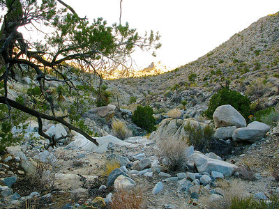 Sweetwater Spring area