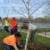 MET 040913 TREES FIRST