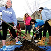 Sterling High School seniors and BLIND students Hannah George (left), Dasan Klingenberg, Marissa Larson, Kinzie Vogel and McKenna Pearson were just a few of the students that help plant a tree this Arbor Day outside of the school.