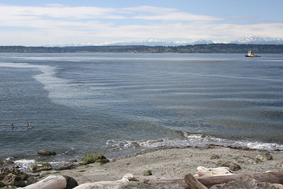 Farthest west point of Discovery Park (West Point)