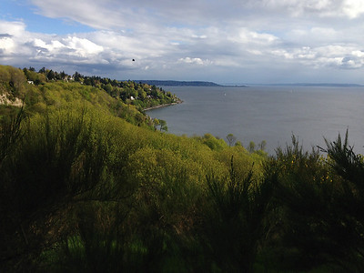 Discovery Park bluffs