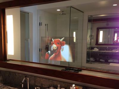 TV embedded in the bathroom mirror