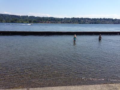 Sweet new beach find on Mercer Island - Clark Beach Park