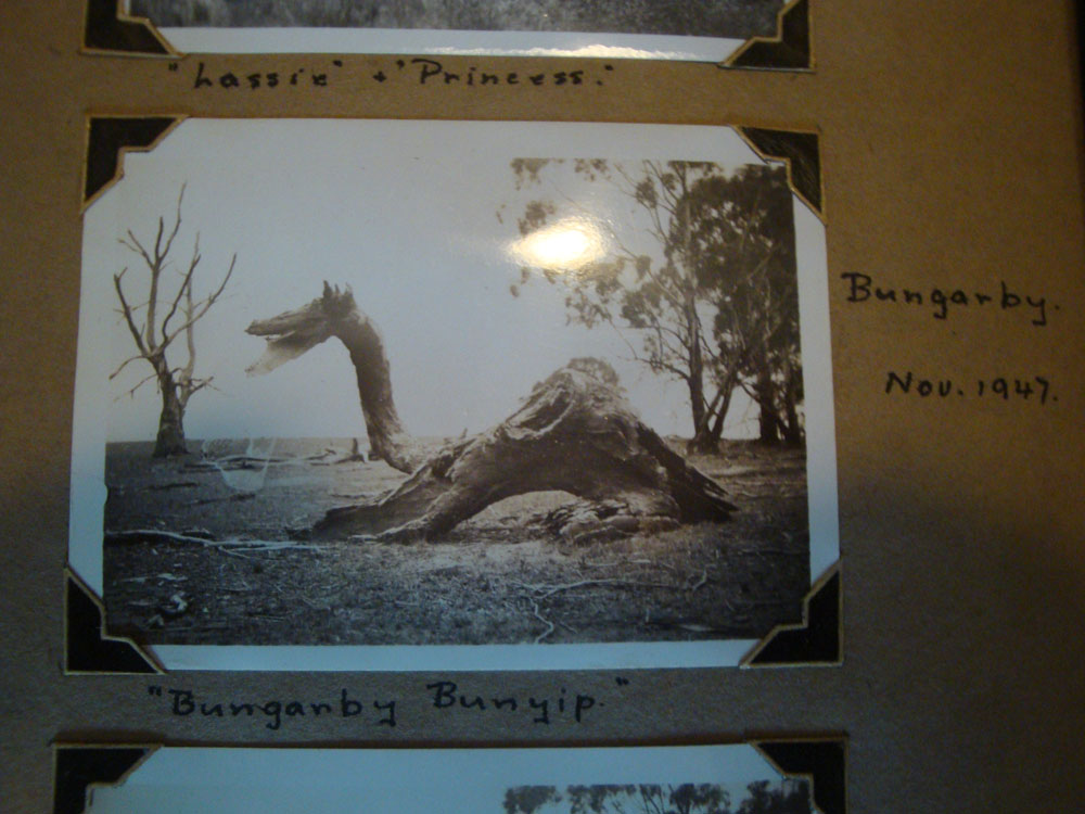 I was thrilled to see their ancient black and white photographs from over half a century ago. This one is a rare photo of the Bunganby Bunyip. It's not only Scotland that has giant serpents...