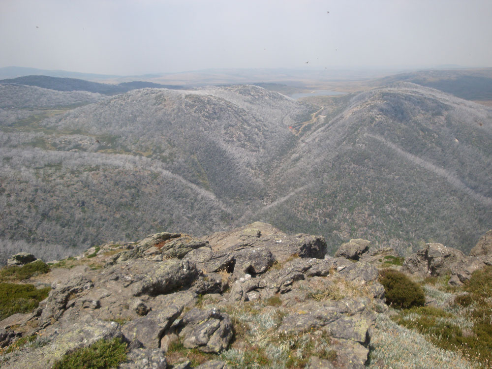 Falls creek high country in summer.