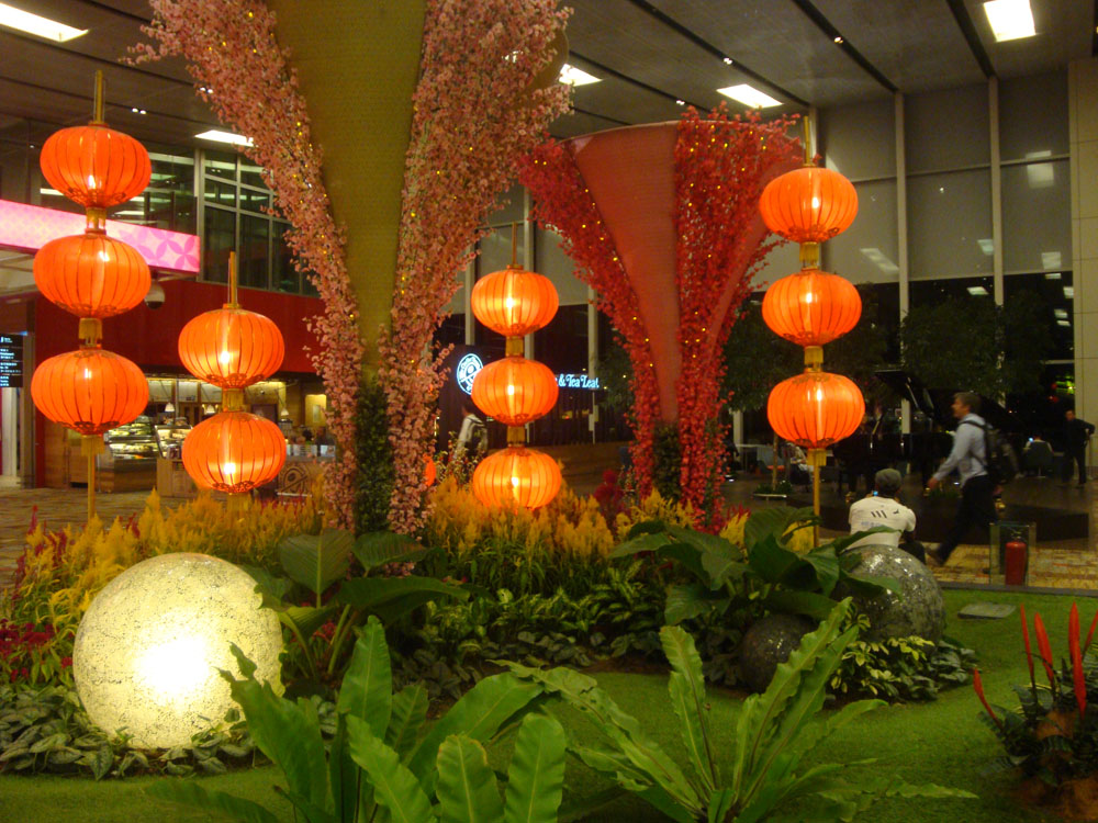 I started with the weird and wonderful sights of Singapore's Changi Airport. I do love it there. They have a massive butterfly house, orchids everywhere, a rooftop cactus garden and pool, and much, much more...