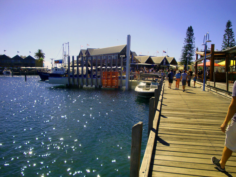 The cafe/restaurants of Fremantle's Fishing Boat Harbour are a mecca for tourists.