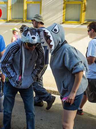 Shark eats dog-fish