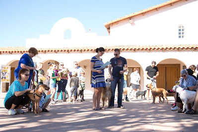 Blessing of the Pets 2013