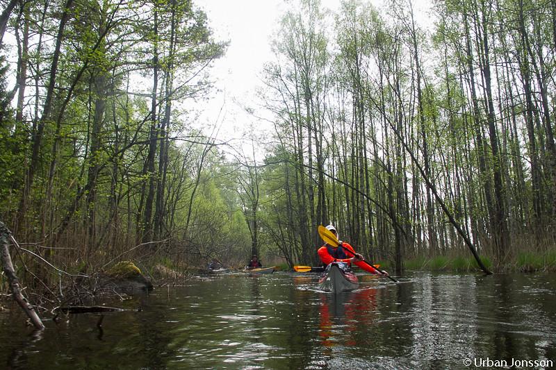 Riktigt häftig & annorlunda paddling.
