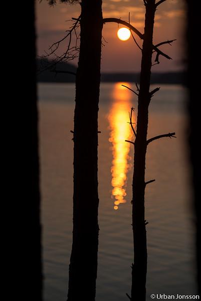 Jag hade bestämt mig för att dra ner på solnedgångsbilderna...!!!