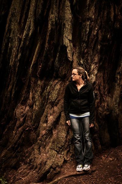 Grace leans against a massive redwood.