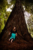 Tracy and a giant redwood.