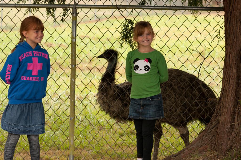 We found an emu.