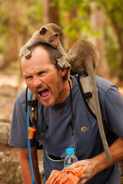 Sharp claws dig in as monkeys climb around Andy's shoulders, searching for things to steal.
