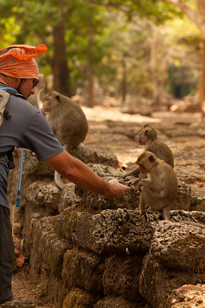 Wild monkeys are dangerously unpredictable, but who can resist a bet? Our friend Andy reaches out to touch one.