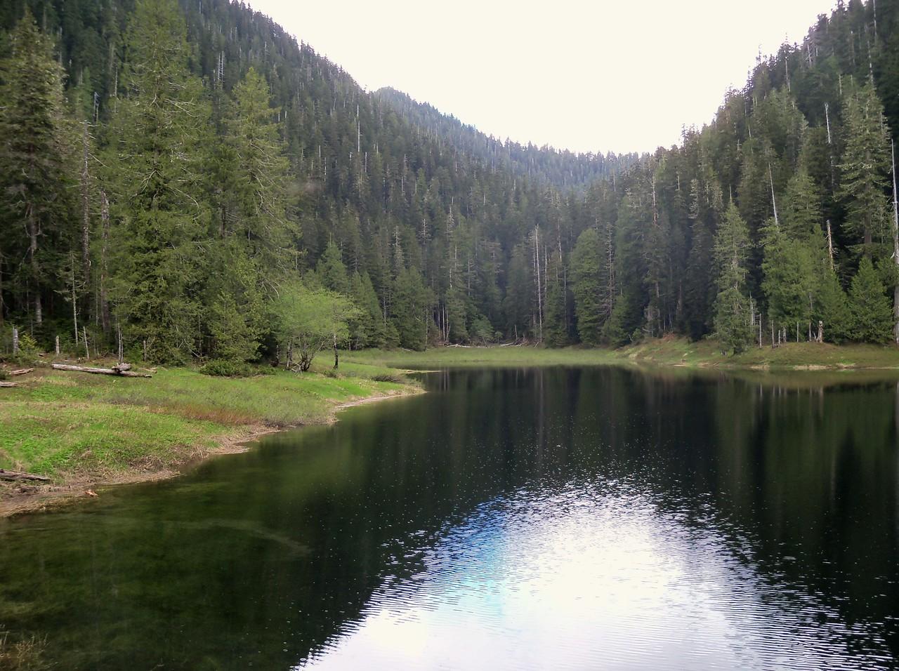 Satsop Lake, the Church Creek Trail continues at the far end...