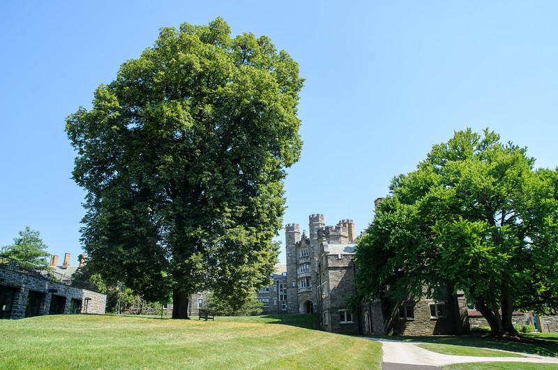 Campus Summer-1626