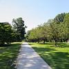 Campus Summer-1567