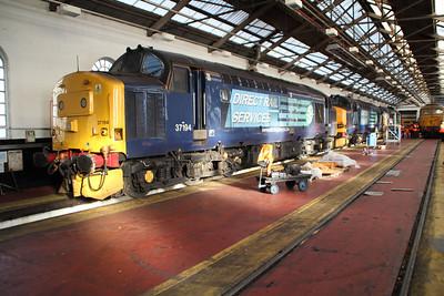 37194 37218 37409 inside Crewe Gresty Bridge.