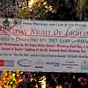St  Armands Tree Lighting 03