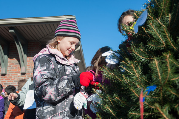 131203 Christmas Drive JOED VIERA/STAFF PHOTOGRAPHER Gasport, NY-Roylton Hartland fourth grader Emma Waterson(9) places a mitten on a the Christmas tree outside of the Gasport post office on Tuesday Dec 3rd, 2013. The mittens have gift recommendations written on them for needy children.