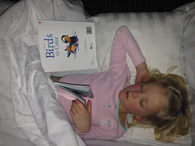 Fast asleep with her bird books. :)