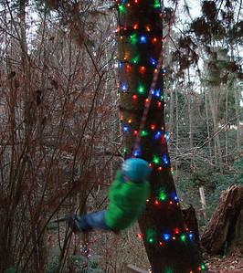 Lights make rope swinging a little more festive