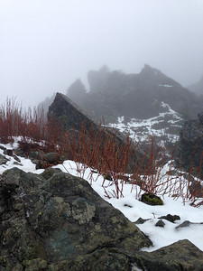Mt Si summit. Brr. No view today.