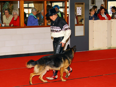 KC Delft Dog Dance 2013