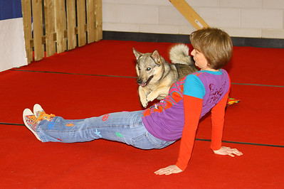 Dogdancewedstrijd KC Delft 17 maart 2013