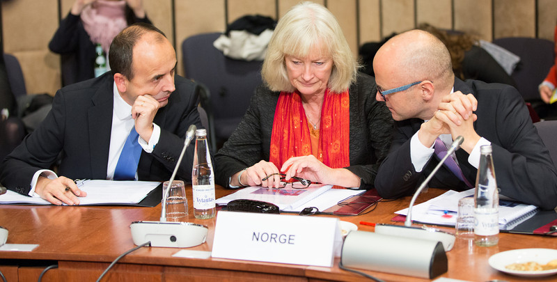 The EEA Council 19 November 2013; From left: Niels Engelschiøn, Deputy Head of Mission of Norway to the EU; Elisabeth Walaas, Director General for Europe &Trade, Ministry of Foreign Affairs, Norway; Vidar Helgesen, Minister of EEA and EU Affairs, Norway (Photo: EFTA)