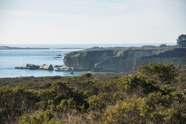 The Año Nuevo coastline