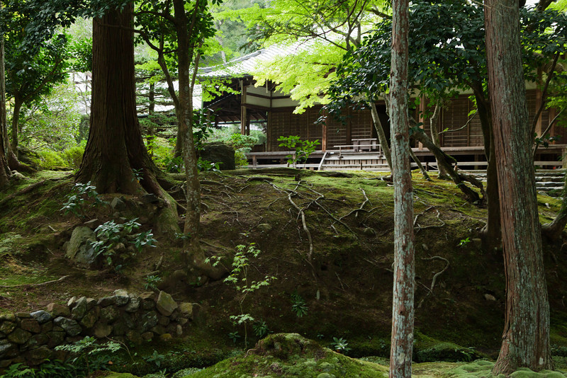 Gardens at Saihou-ji or the Moss Temple  in Kyoto, Japan on Oct. 2, 2013 (Photo / Ko Sasaki)