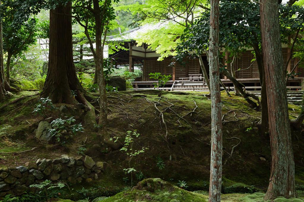 Gardens at Saihou-ji or the Moss Temple  in Kyoto, Japan on Oct. 2, 2013 (Photo / Ko Sasaki)