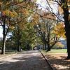 Fall 2012-6467