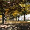 Fall 2012-6462