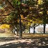 Fall 2012-6461