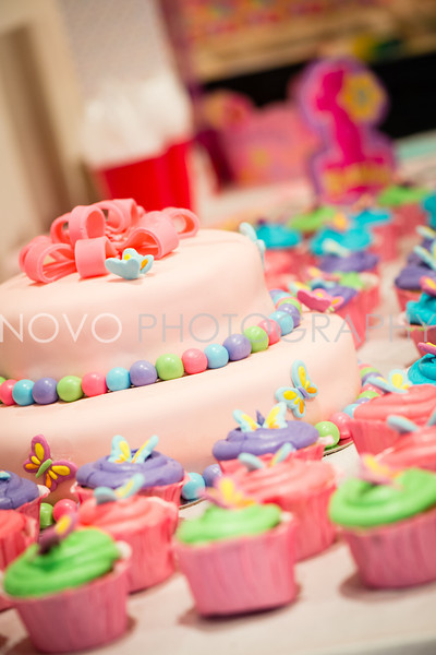 0001-Elliana First Birthday c0028