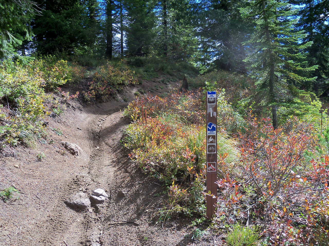 #1 Boundary Trail in the Dark Divide