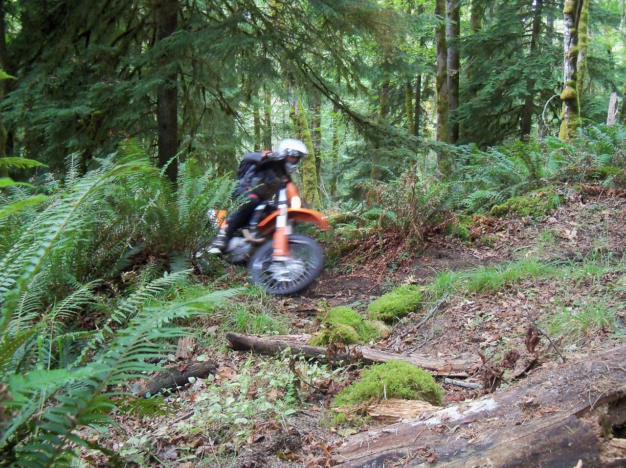 Steve riding the Krause Ridge Trail
