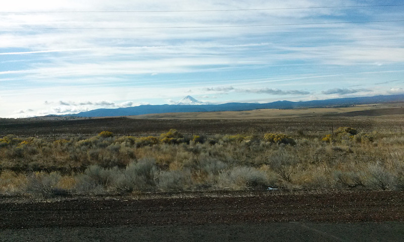 Mt. Hood from Hwy 395