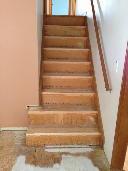 Carpet gone on the stairs.
