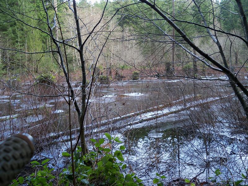 Beaver Pond Trail GM