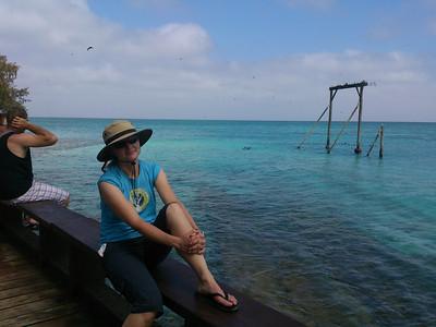 Heron & Wilson Islands