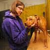 MET010713dog abuse skinner